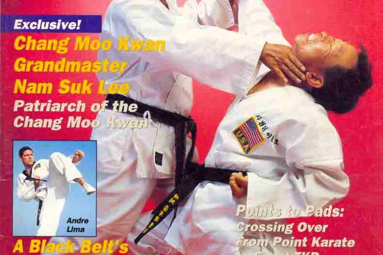 What is Grand Master Lee's Triangle System?